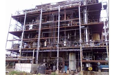 300 TPA Lactic Acid Production